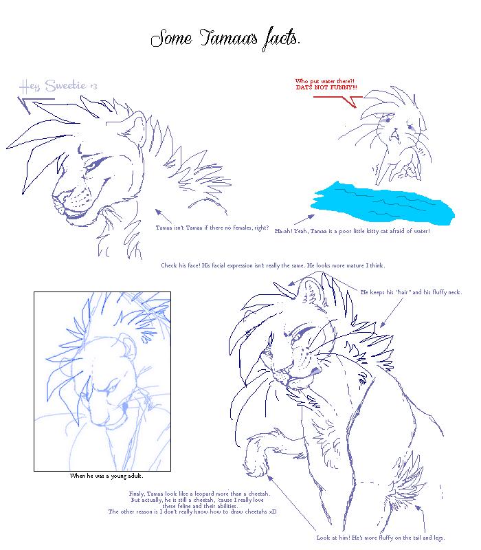 Apprivoiser Sieur BOO - Page 4 Someta10