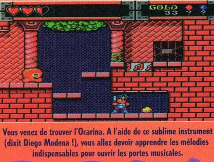 WB Monster world Joypad10