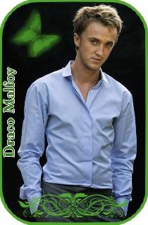 Les cartes de membres Draco_11