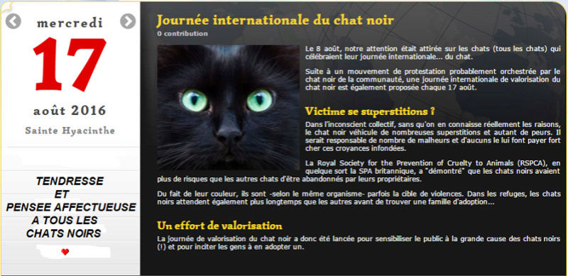 JOURNEE HOMMAGE AUX CHATS NOIRS Chat_n10