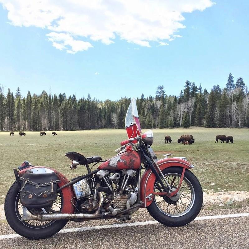 Les vieilles Harley....(ante 84) par Forum Passion-Harley - Page 40 14089110