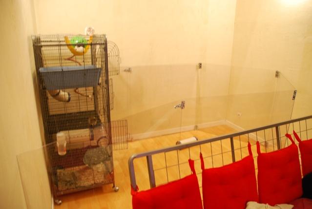 Barrière (fine) anti-passage de rats en plexiglass: quelle hauteur ? Dcs_0010