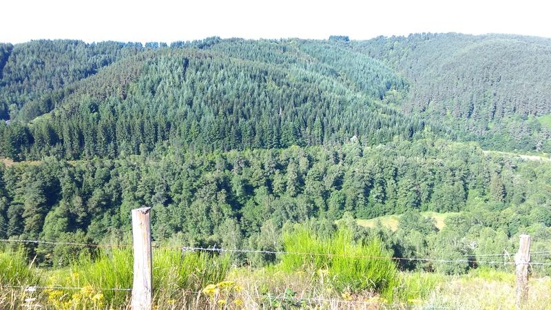 photo des gaziers en vacances Imag0111