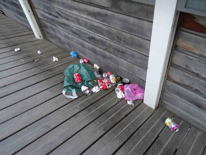 Encombrants, poubelles et caddies - Page 2 Dsc00111