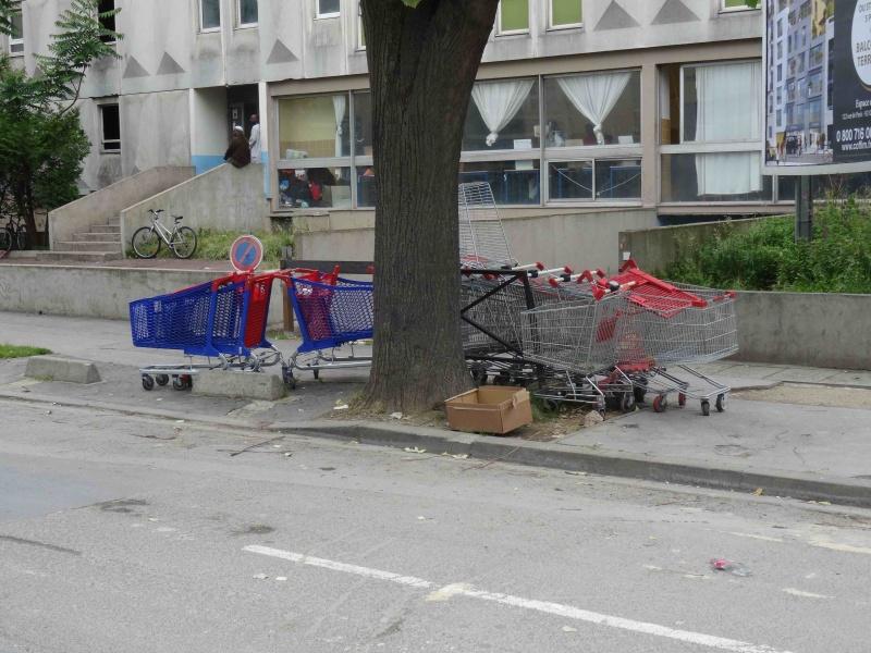 Encombrants, poubelles et caddies - Page 2 Dsc09232