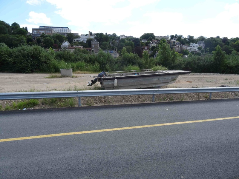 Crues de la Seine Dsc09628