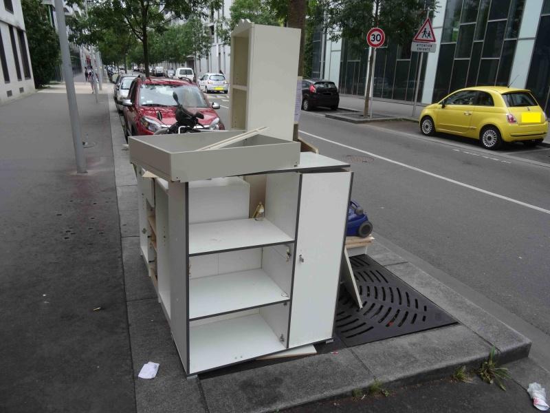 Encombrants, poubelles et caddies - Page 2 Dsc09716