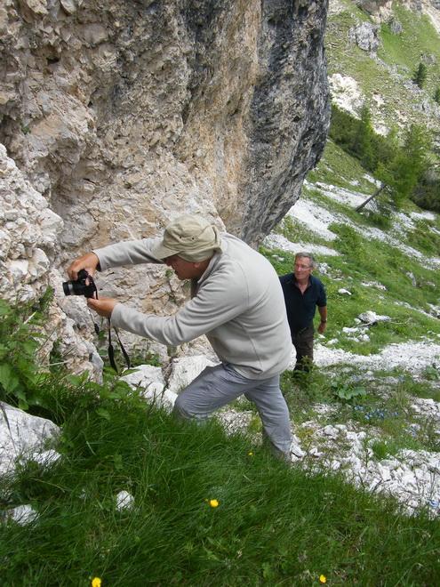 Les Dolomites d'Ampezzo et le Monte Pelmo 14_28910