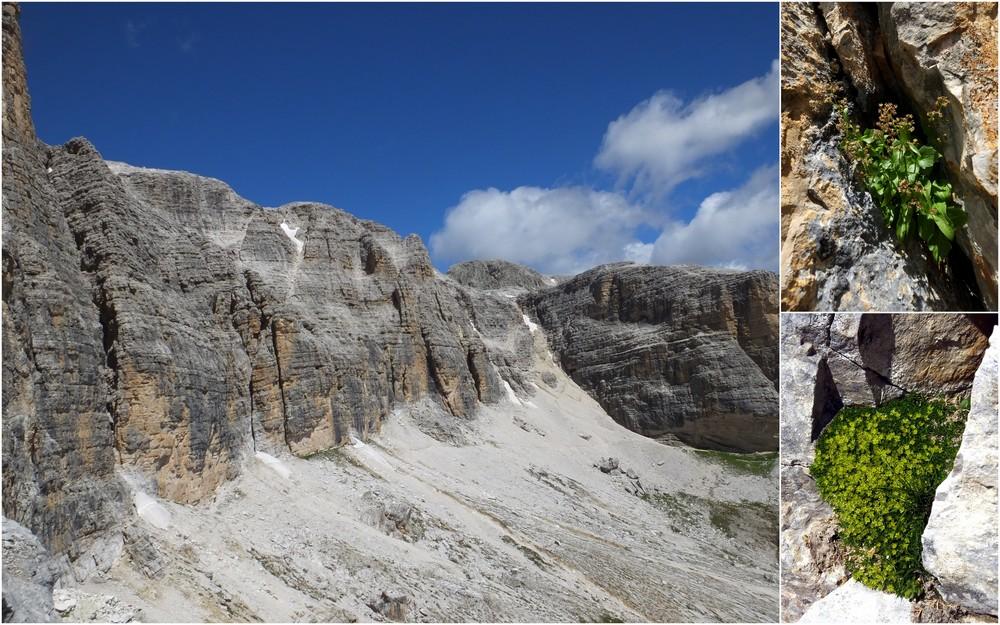 Dolomites Groupe du Sella - juillet 2016 19_sel10