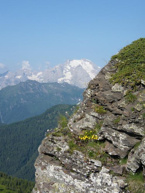Les Dolomites d'Ampezzo et le Monte Pelmo 24_mar10