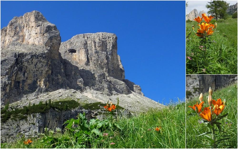 Dolomites Groupe du Sella - juillet 2016 2_pass11