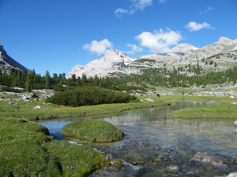 Une semaine dans le Parc naturel Fanes-Senes-Braies 34_ra_10