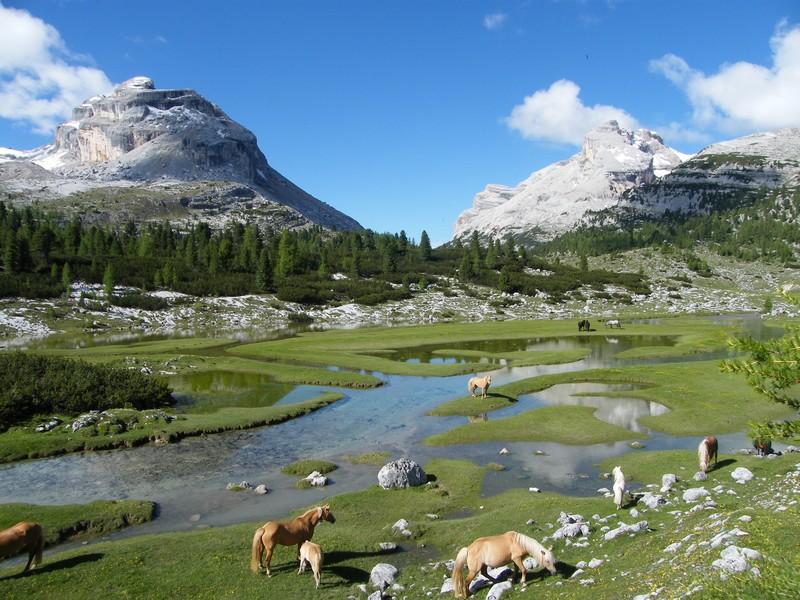 Une semaine dans le Parc naturel Fanes-Senes-Braies 35_ra_10