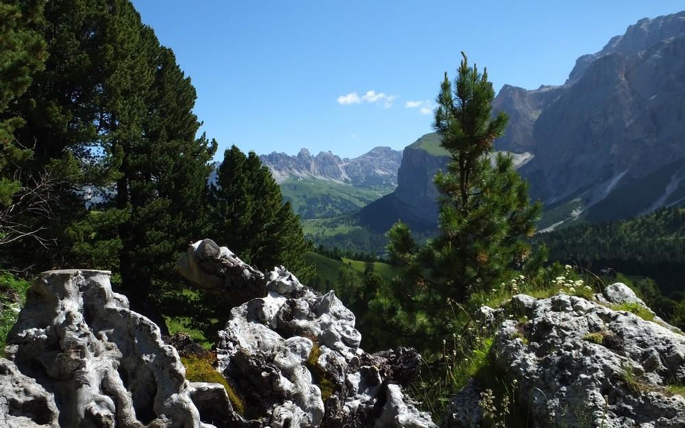 Dolomites Groupe du Sella - juillet 2016 38_cit11