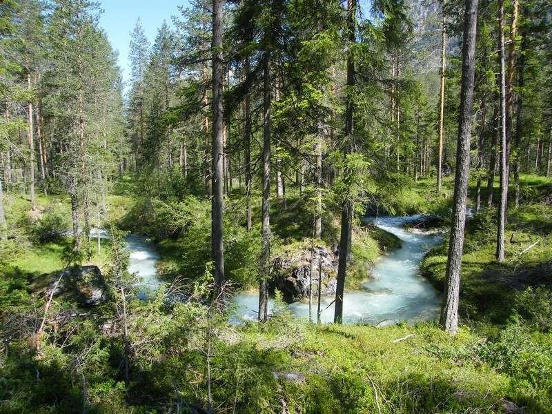 Une semaine dans le Parc naturel Fanes-Senes-Braies 3_ra_d10