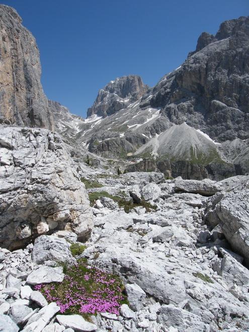 Du 13 au 19 juillet dans le Val di Fassa 4_cati10