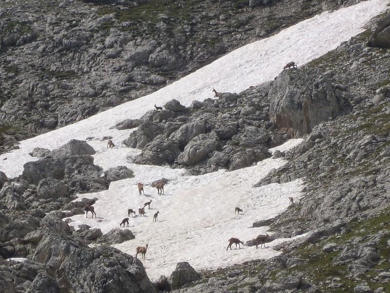 Les Dolomites d'Ampezzo et le Monte Pelmo 6_cinq10