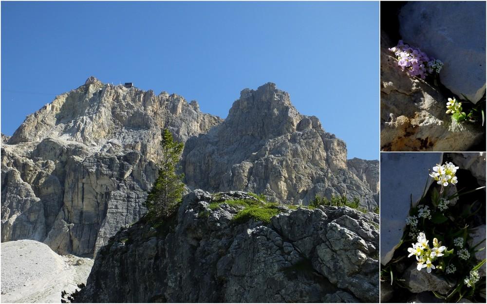 Dolomites Passo Falzarego Juillet 2016 8_laga10