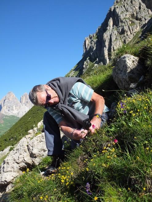 Alpes orientales J5 - Passo Pordoi (It) Pordoi18
