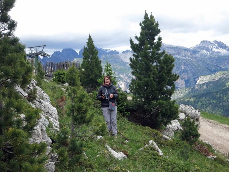 Alpes orientales J6 - Passo Pordoi, Passo Sella (It) Pordoi29