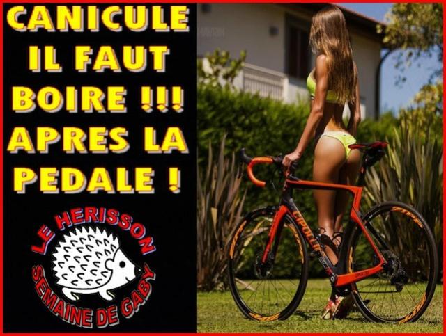 Bonjour, bonsoir..... - Page 21 7192710