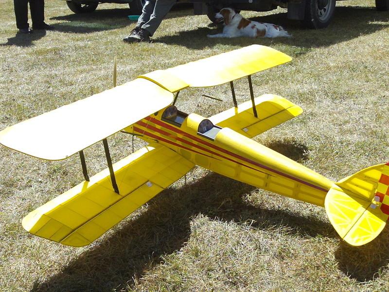 Tiger Moth 123_1710