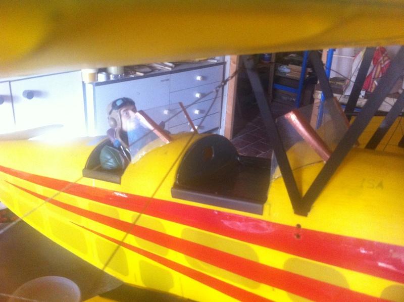 Tiger Moth Img_1710