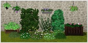 Цветы - Страница 7 Tumbl378