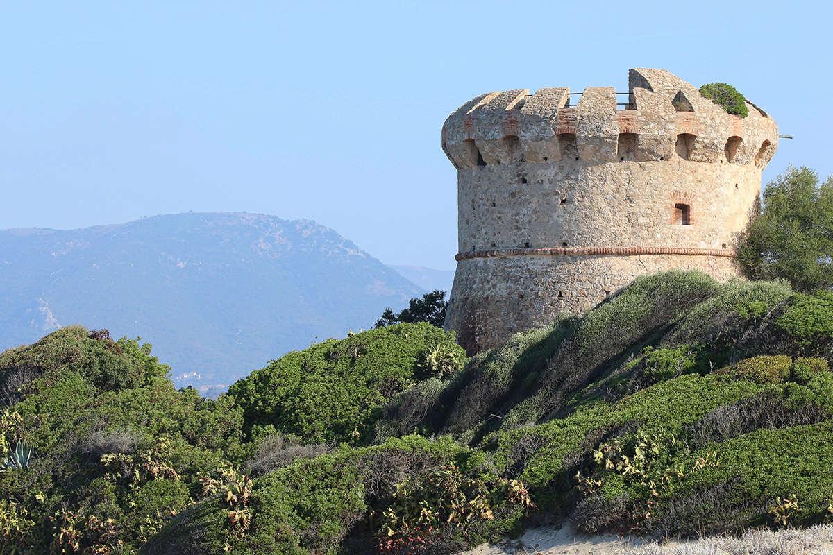 Les Tours Génoises du littoral Corse - Page 3 Img_9924