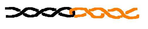 corde orizzontali....tips & tricks - Pagina 2 Trecci10
