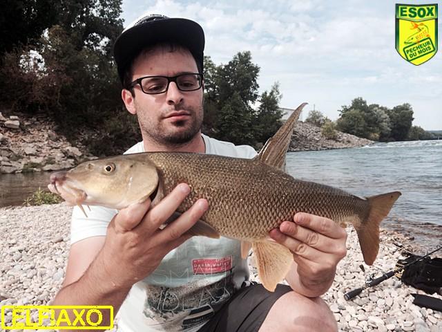 Suivi photos des Pêcheurs du mois élus Elfiax10