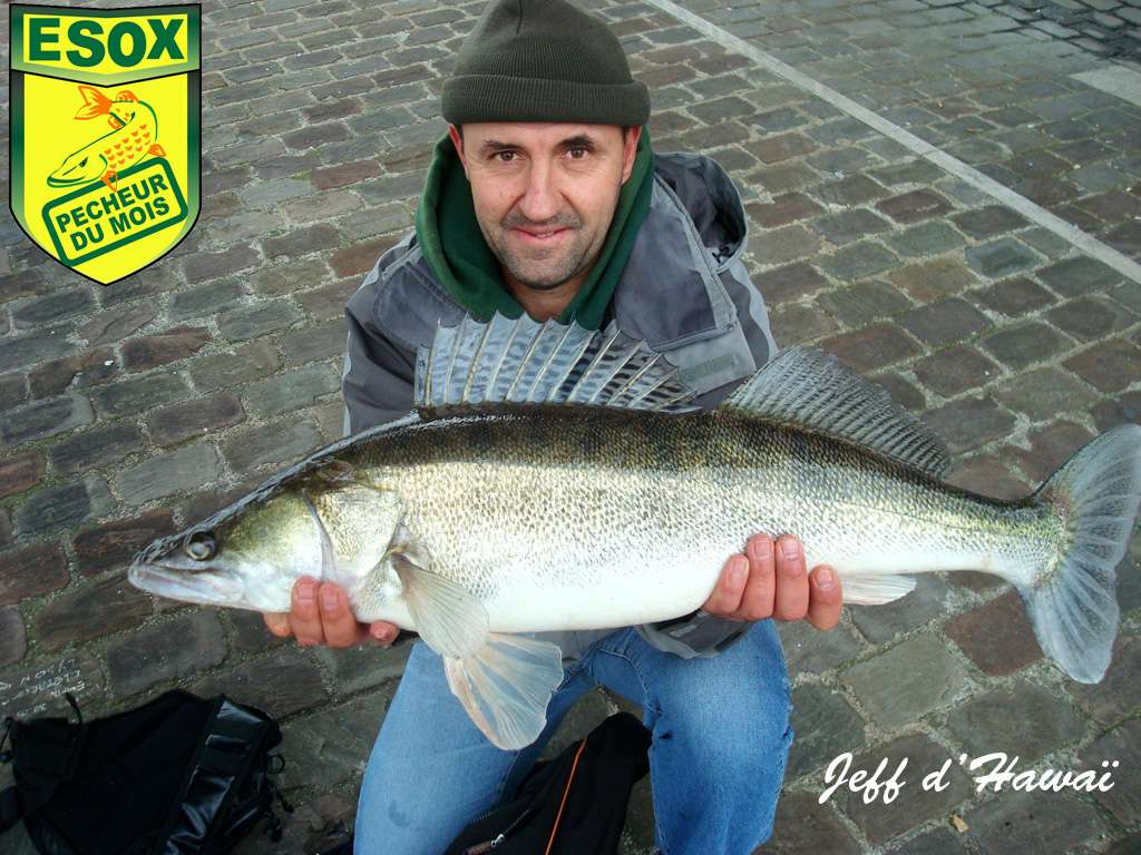 Suivi photos des Pêcheurs du mois élus Jeff_d11