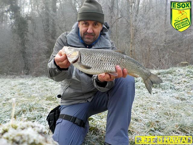 Suivi photos des Pêcheurs du mois élus Jeff_d12