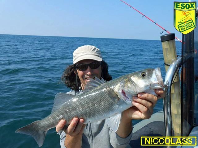 Suivi photos des Pêcheurs du mois élus Niccol11