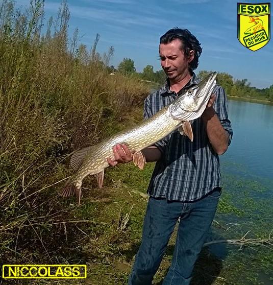 Suivi photos des Pêcheurs du mois élus Niccol12