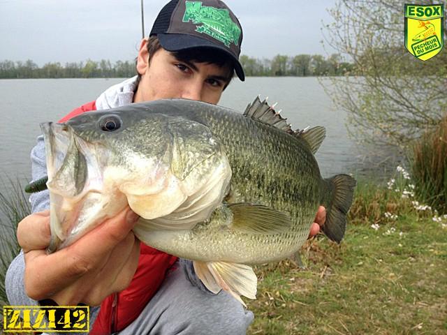 Suivi photos des Pêcheurs du mois élus Zizi4210