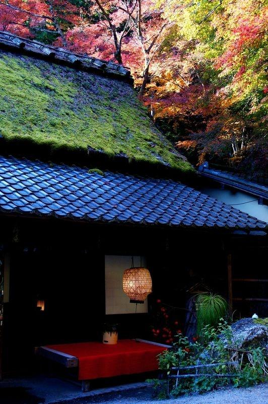 [Vidéo] Magnifique !!!  - Page 2 Kyoto025