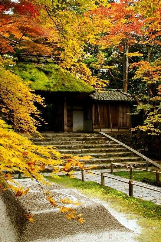 [Vidéo] Magnifique !!!  - Page 2 Kyoto027