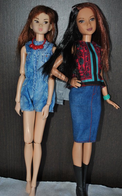 NEWS!! Nouvelle Barbie fashionista - Page 4 Dsc_2821