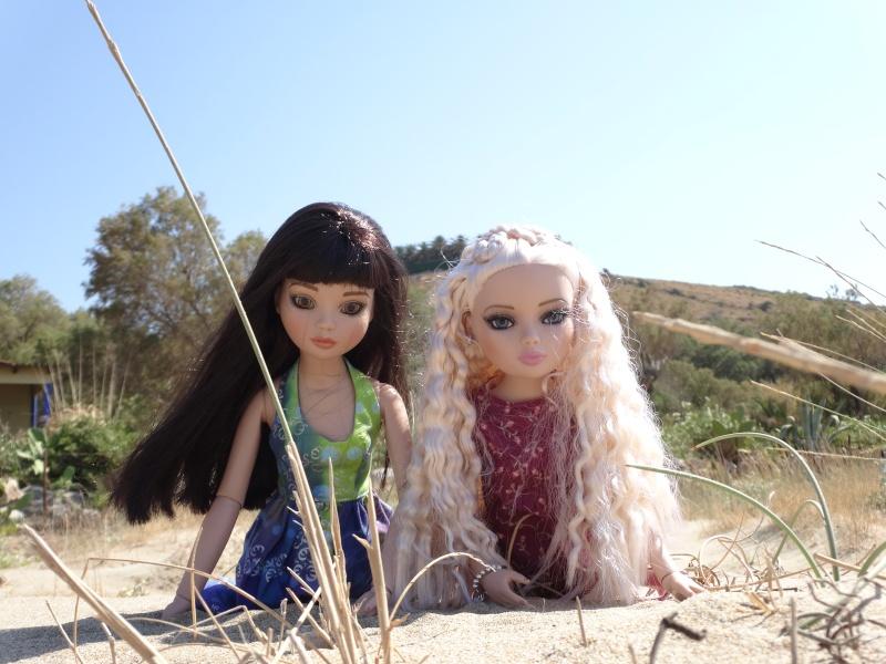 Deux Ellowyne en vacances avec Mellody  - Page 2 Dsc00517