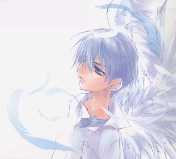 DN Angel Rosett11