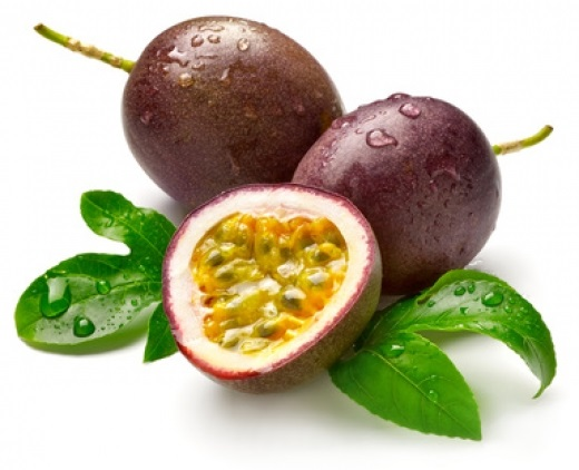 cahier de vacances de Pupusse Fruit-10