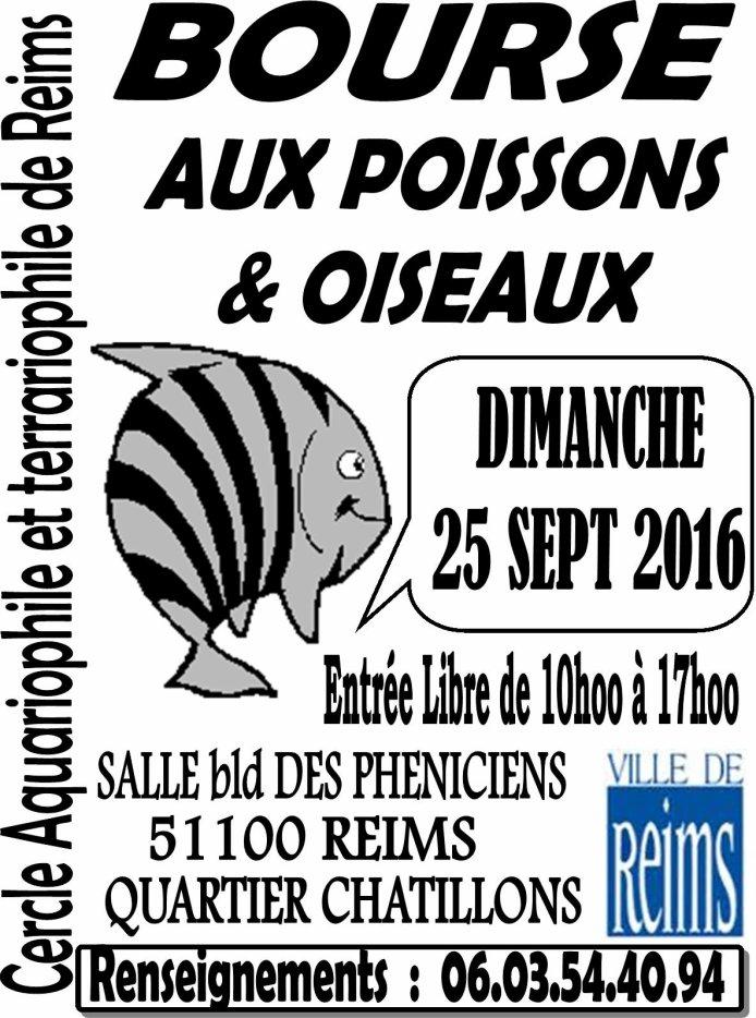 Bourse à Reims (51) - le 25 Sept 2016 aux poissons & oiseaux 32808310