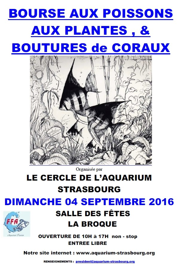 Bourse à LA BROQUE (67) - 4 septembre 2016 Bourse10