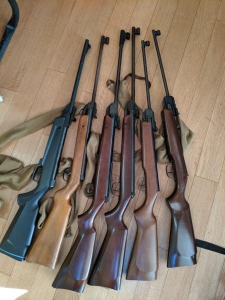 Quelques carabines à vérifier Img_2025