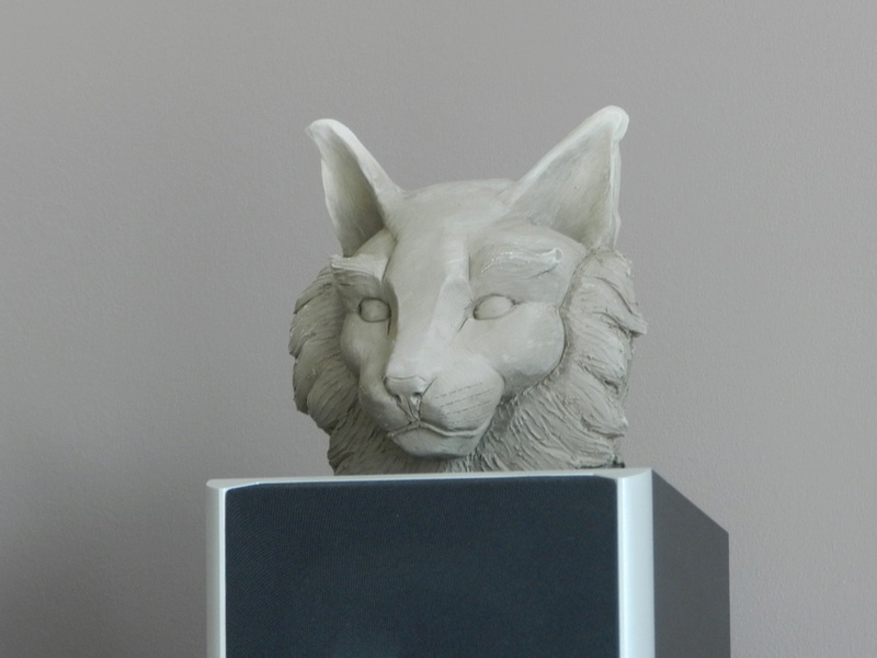 Tête de chat Dscn0111