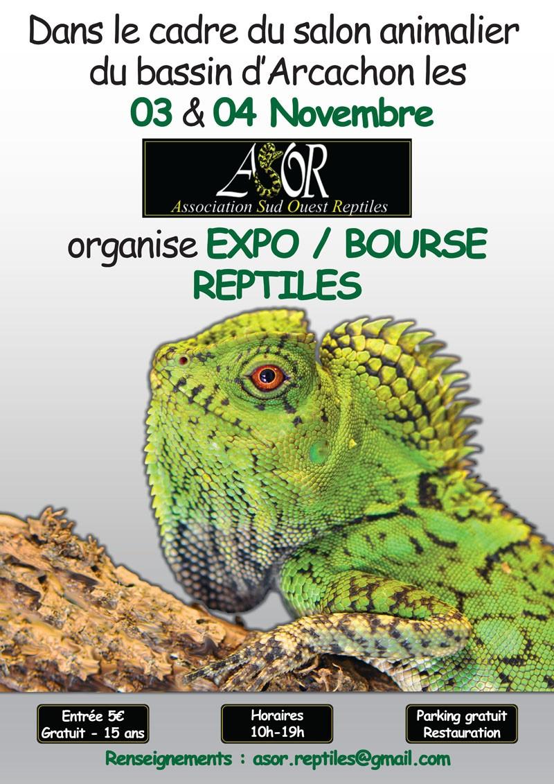 Expo/Bourse ASOR les 3 et 4 Novembre 2012 Affich10