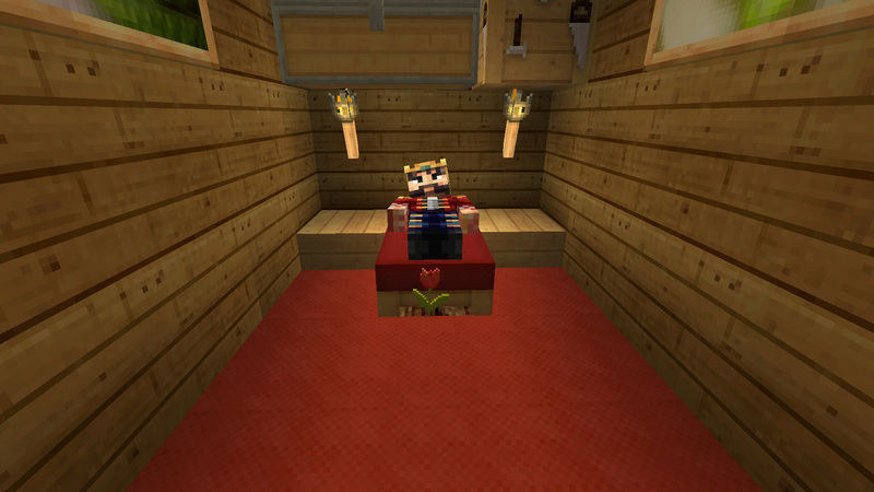 Minecraft pictures. - Page 2 2016-017