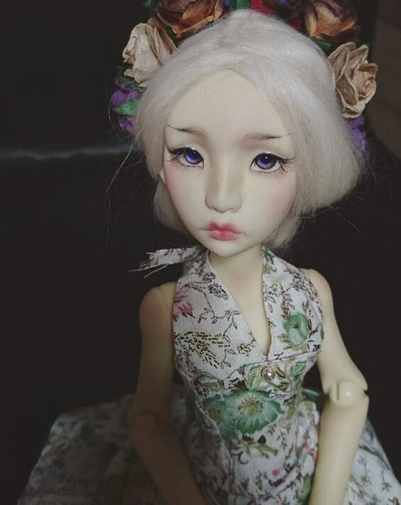 Amaryllis,  Cerisdoll Ninon  _2016011