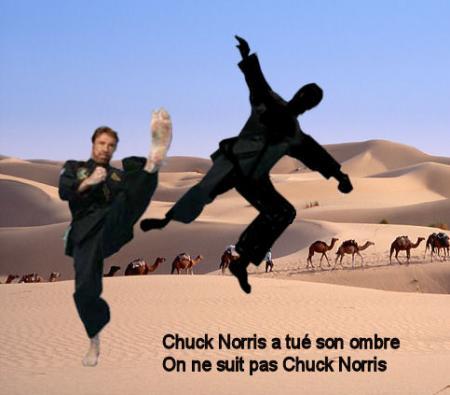 Chuck Norris...La légende Q49c5410